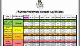 2020 04 04 Hemp Lively Dosage Guidelines