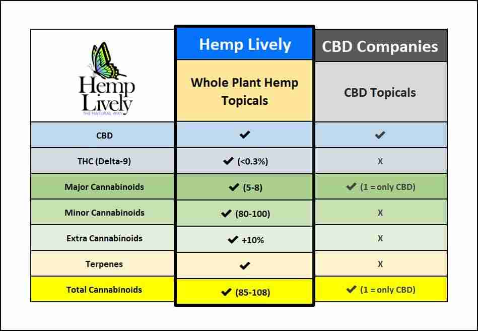 3D CBD Product Comparison Chart Whole Plant Hemp Topicals 949x657 2
