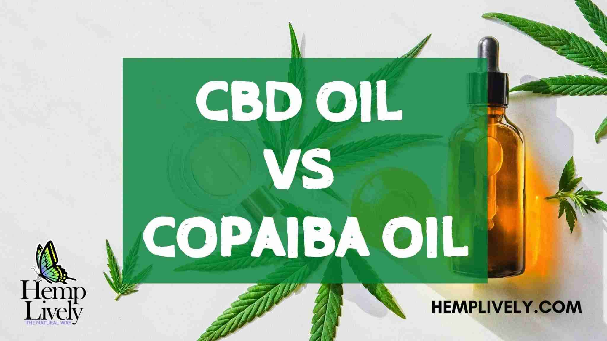 CBD Oil VS Copaiba Oil: Things That You Need To Know