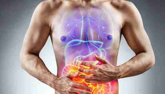 CBD and Digestion