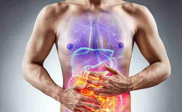 Understanding CBD and Digestion