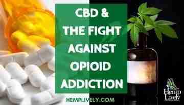 CBD and Opioid Addiction Blog Banner 1