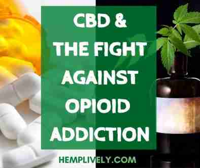 CBD and Opioid Addiction Blog Banner 1