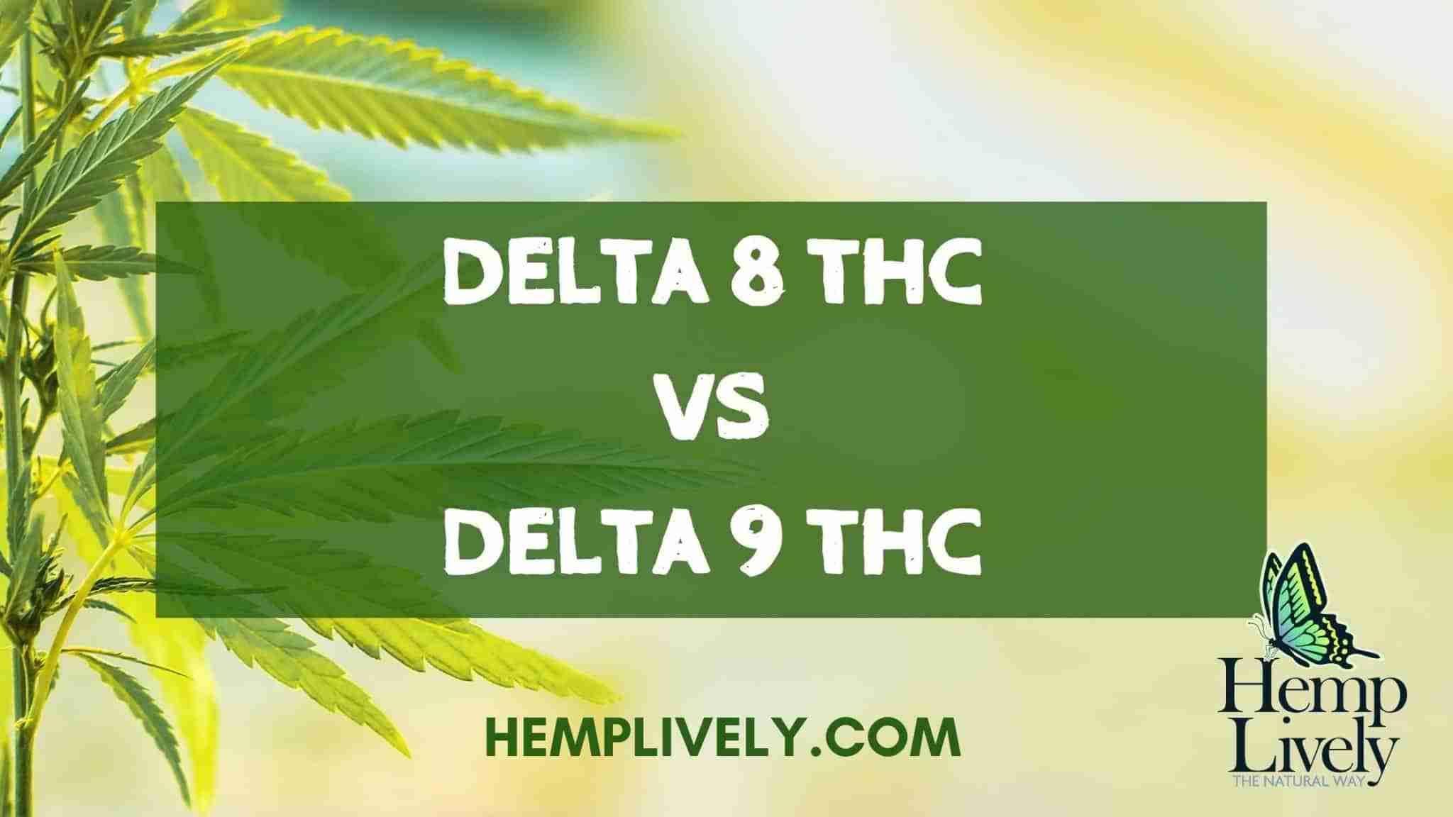 Getting To Know Delta 8 THC: Delta 8 THC vs Delta 9 THC?