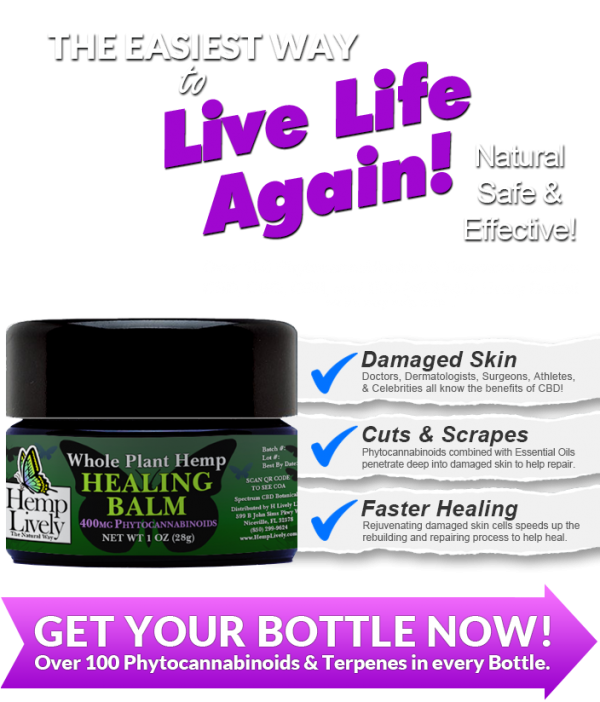 Hemp Lively Live Life Again with Whole Plant Hemp Healing Balm MOBILE