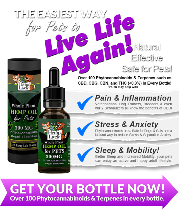 Hemp Lively Live Life Again with Whole Plant Hemp Oil for Pets