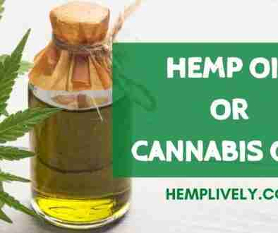 Hemp Oil Or Cannabis Oil Whats The Difference Blog Banner 1