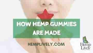 How Hemp Gummies are made