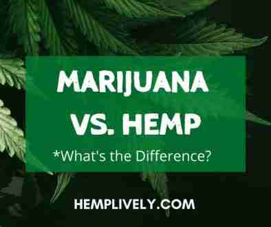 Marijuana vs Hemp Blog Banner