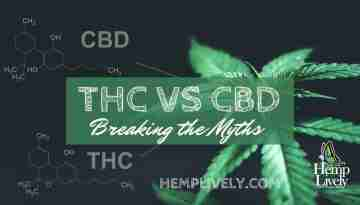 THC VS CBD Blog Banner 1