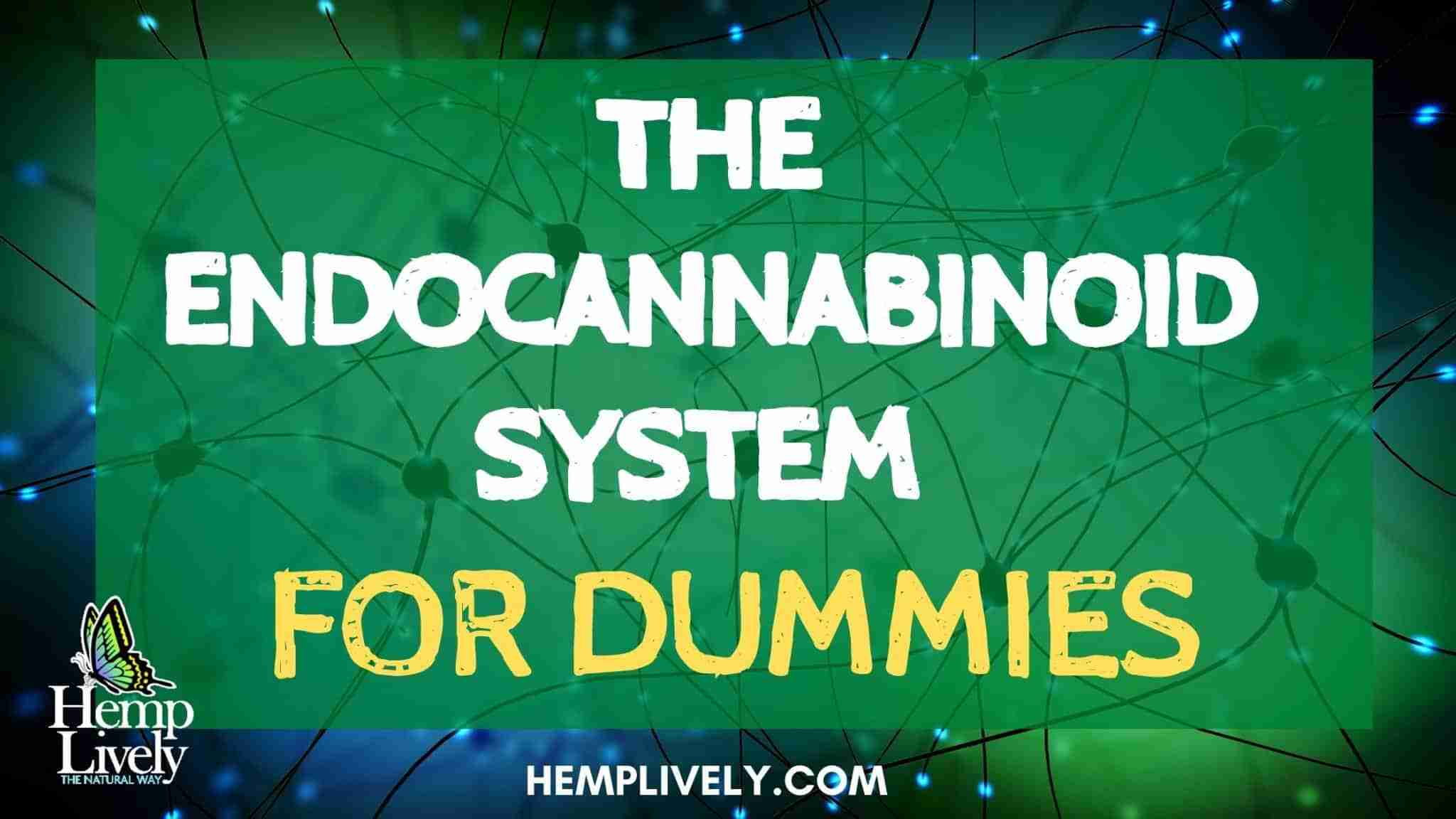 The Endocannabinoid System for Dummies