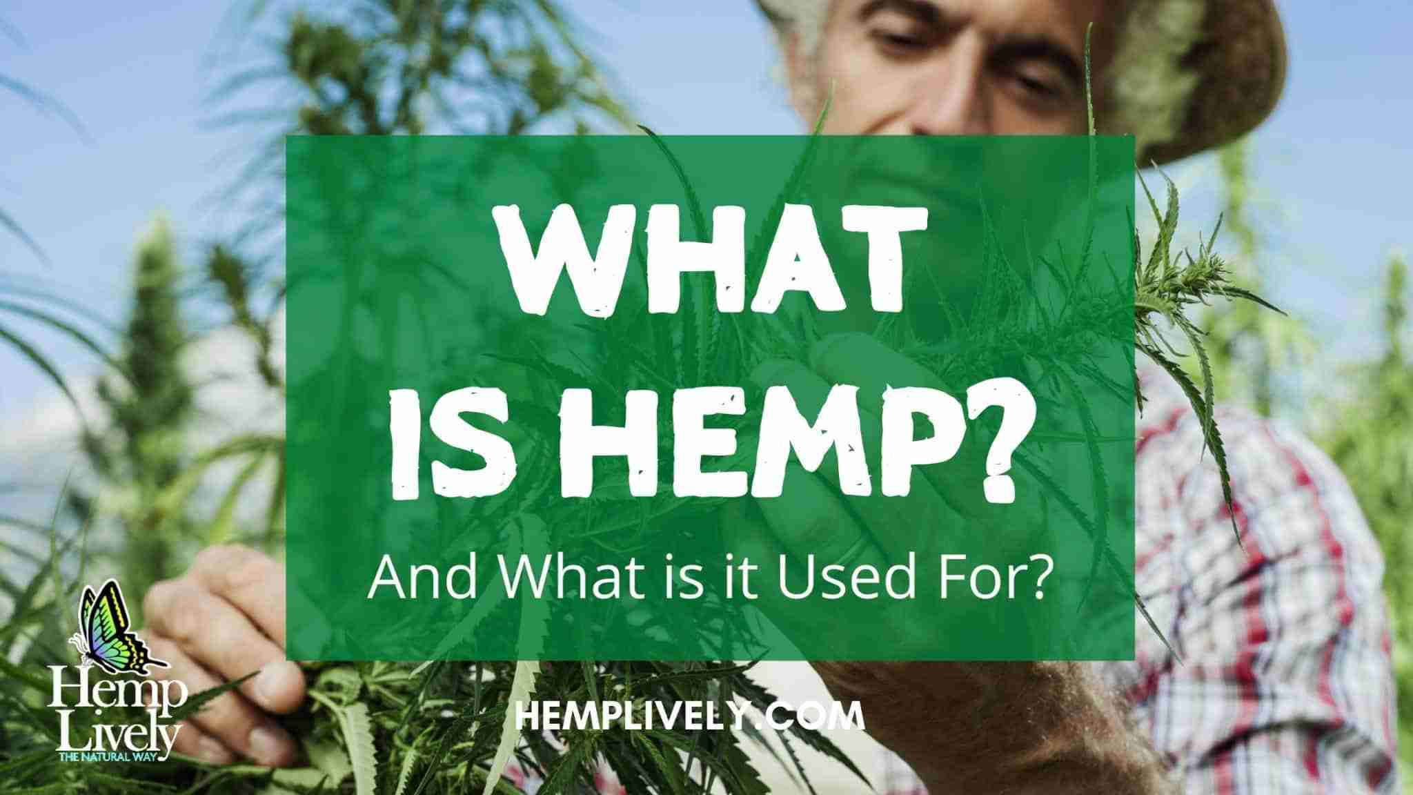 What is Hemp and What is it Used For?